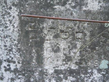 HARRIS, ELLA (CLOSE UP) - Webster County, Louisiana | ELLA (CLOSE UP) HARRIS - Louisiana Gravestone Photos