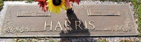HARRIS, G DREW - Webster County, Louisiana   G DREW HARRIS - Louisiana Gravestone Photos