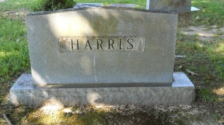 HARRIS, MEMORIAL - Webster County, Louisiana | MEMORIAL HARRIS - Louisiana Gravestone Photos