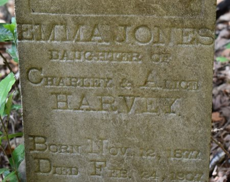 HARVEY, EMMA JONES (CLOSE UP) - Webster County, Louisiana | EMMA JONES (CLOSE UP) HARVEY - Louisiana Gravestone Photos