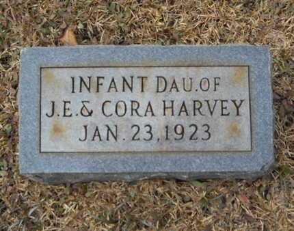 HARVEY, INFANT DAUGHTER - Webster County, Louisiana | INFANT DAUGHTER HARVEY - Louisiana Gravestone Photos