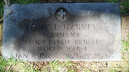 HARVEY, TONY F (VETERAN WWI) - Webster County, Louisiana | TONY F (VETERAN WWI) HARVEY - Louisiana Gravestone Photos