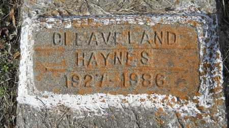 HAYNES, CLEAVELAND - Webster County, Louisiana | CLEAVELAND HAYNES - Louisiana Gravestone Photos