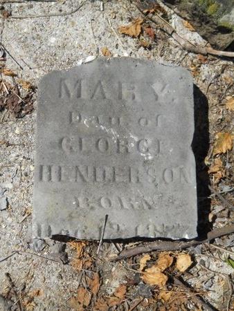 HENDERSON, MARY - Webster County, Louisiana | MARY HENDERSON - Louisiana Gravestone Photos