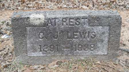LEWIS, C J - Webster County, Louisiana | C J LEWIS - Louisiana Gravestone Photos