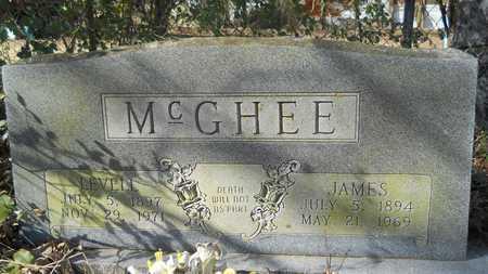 MCGHEE, LEVELL - Webster County, Louisiana | LEVELL MCGHEE - Louisiana Gravestone Photos