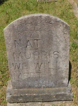 MORRIS, NAT - Webster County, Louisiana | NAT MORRIS - Louisiana Gravestone Photos