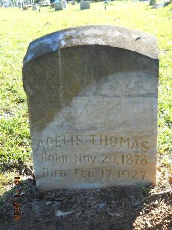 THOMAS, APELIS - Webster County, Louisiana | APELIS THOMAS - Louisiana Gravestone Photos