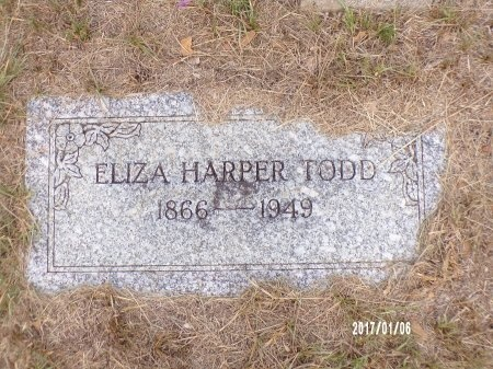 TODD, ELIZA - Webster County, Louisiana | ELIZA TODD - Louisiana Gravestone Photos