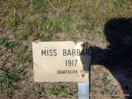 UNKNOWN, BARBARA - Webster County, Louisiana | BARBARA UNKNOWN - Louisiana Gravestone Photos