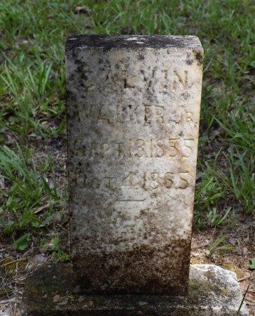 WALKER, CALVIN, JR - Webster County, Louisiana | CALVIN, JR WALKER - Louisiana Gravestone Photos