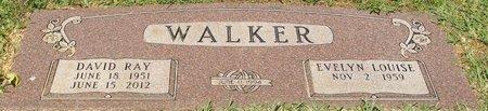 WALKER, DAVID RAY - Webster County, Louisiana | DAVID RAY WALKER - Louisiana Gravestone Photos