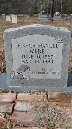 WEBB, JOSHUA MANUEL - Webster County, Louisiana | JOSHUA MANUEL WEBB - Louisiana Gravestone Photos