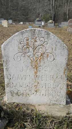 WEBB, JAMES CALVIN - Webster County, Louisiana   JAMES CALVIN WEBB - Louisiana Gravestone Photos