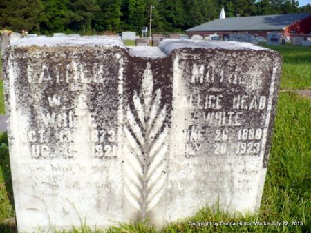 HEAD WHITE, ALLICE - Webster County, Louisiana | ALLICE HEAD WHITE - Louisiana Gravestone Photos