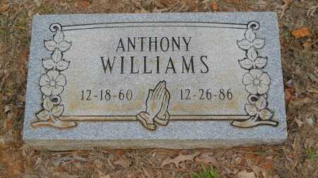 WILLIAMS, ANTHONY - Webster County, Louisiana   ANTHONY WILLIAMS - Louisiana Gravestone Photos