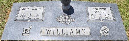 WILLIAMS, JOSEPHINE - Webster County, Louisiana | JOSEPHINE WILLIAMS - Louisiana Gravestone Photos