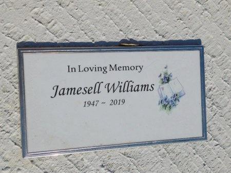 WILLIAMS, JAMESELL - Webster County, Louisiana   JAMESELL WILLIAMS - Louisiana Gravestone Photos