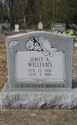 WILLIAMS, JAMES A - Webster County, Louisiana | JAMES A WILLIAMS - Louisiana Gravestone Photos