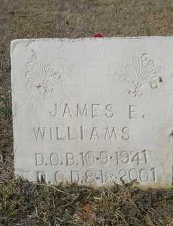 WILLIAMS, JAMES E - Webster County, Louisiana | JAMES E WILLIAMS - Louisiana Gravestone Photos