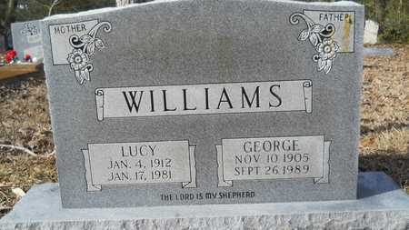 WILLIAMS, LUCY - Webster County, Louisiana | LUCY WILLIAMS - Louisiana Gravestone Photos