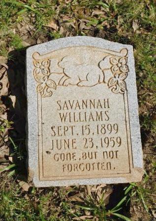 WILLIAMS, SAVANNAH - Webster County, Louisiana   SAVANNAH WILLIAMS - Louisiana Gravestone Photos