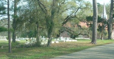 * OVERVIEW,  - West Feliciana County, Louisiana |  * OVERVIEW - Louisiana Gravestone Photos