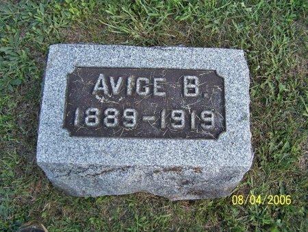 BRIGGS, AVICE - Barry County, Michigan | AVICE BRIGGS - Michigan Gravestone Photos