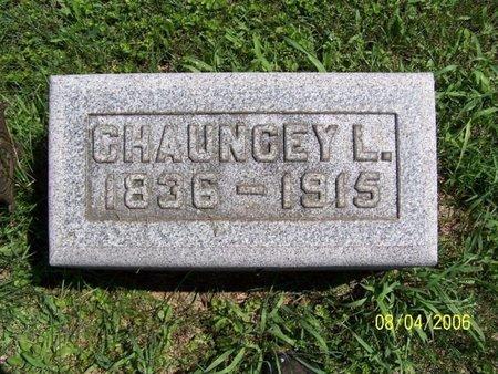 BRIGGS, CHAUNCEY L. - Barry County, Michigan   CHAUNCEY L. BRIGGS - Michigan Gravestone Photos