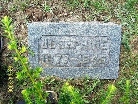 BRIGGS, JOSEPHINE - Barry County, Michigan | JOSEPHINE BRIGGS - Michigan Gravestone Photos
