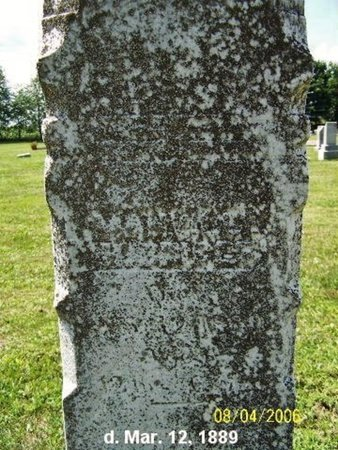 BRIGGS, MANVILLE - Barry County, Michigan | MANVILLE BRIGGS - Michigan Gravestone Photos