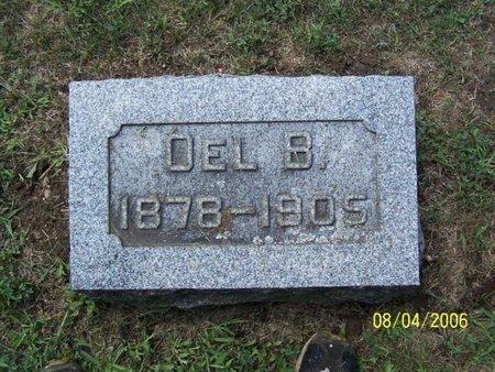 BRIGGS, OEL - Barry County, Michigan | OEL BRIGGS - Michigan Gravestone Photos
