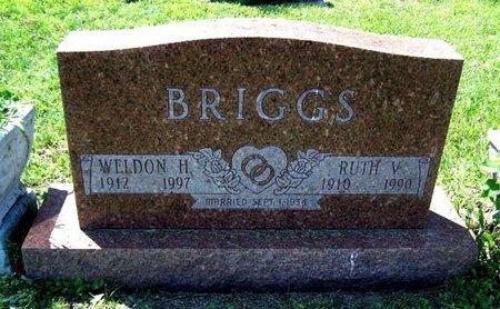 BRIGGS, WELDON - Barry County, Michigan | WELDON BRIGGS - Michigan Gravestone Photos