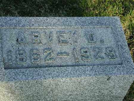 ADAMS, ARVEY - Branch County, Michigan | ARVEY ADAMS - Michigan Gravestone Photos