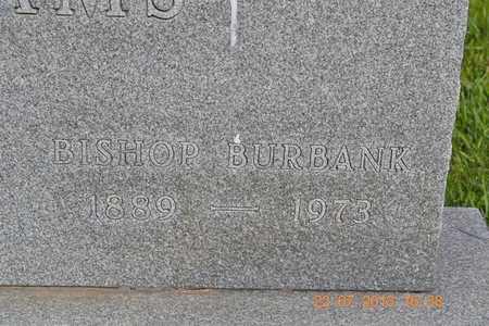 ADAMS, BISHOP BURBANK - Branch County, Michigan | BISHOP BURBANK ADAMS - Michigan Gravestone Photos