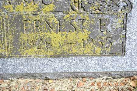 ADAMS, ERNEST E. - Branch County, Michigan | ERNEST E. ADAMS - Michigan Gravestone Photos