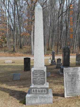 ADAMS, FAMILY - Branch County, Michigan   FAMILY ADAMS - Michigan Gravestone Photos