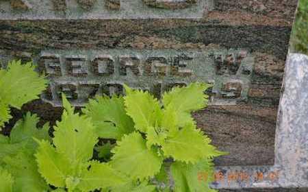 ADAMS, GEORGE W. - Branch County, Michigan | GEORGE W. ADAMS - Michigan Gravestone Photos