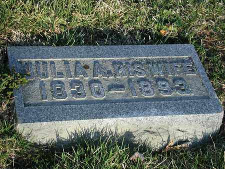 ADAMS, JULIA - Branch County, Michigan   JULIA ADAMS - Michigan Gravestone Photos