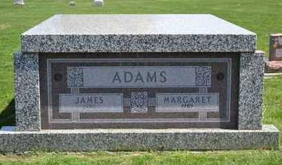 ADAMS, JAMES - Branch County, Michigan | JAMES ADAMS - Michigan Gravestone Photos