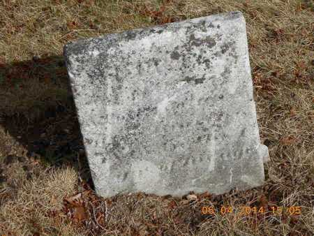 ADAMS, MAMIE - Branch County, Michigan | MAMIE ADAMS - Michigan Gravestone Photos