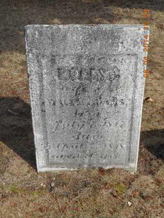 ADAMS, POLLY - Branch County, Michigan   POLLY ADAMS - Michigan Gravestone Photos