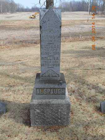 ALSPAUGH, FAMILY - Branch County, Michigan | FAMILY ALSPAUGH - Michigan Gravestone Photos
