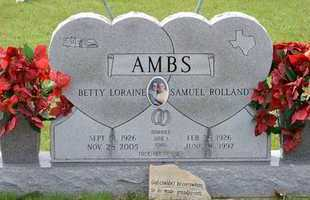 AMBS, SAMUEL ROLLAND - Branch County, Michigan   SAMUEL ROLLAND AMBS - Michigan Gravestone Photos