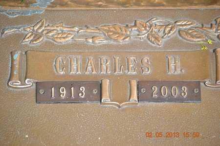 AUSTIN, CHARLES H.(CLOSEUP) - Branch County, Michigan | CHARLES H.(CLOSEUP) AUSTIN - Michigan Gravestone Photos