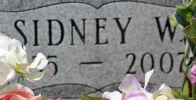AVERY, SIDNEY W.(CLOSEUP) - Branch County, Michigan | SIDNEY W.(CLOSEUP) AVERY - Michigan Gravestone Photos