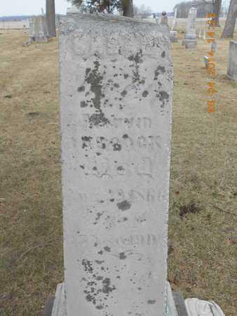 BABCOCK, SARAH - Branch County, Michigan | SARAH BABCOCK - Michigan Gravestone Photos