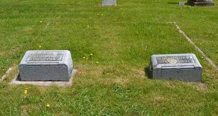 BALL, ARMINDA M. - Branch County, Michigan | ARMINDA M. BALL - Michigan Gravestone Photos