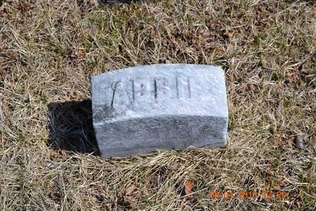 BARHART, ABBIE - Branch County, Michigan   ABBIE BARHART - Michigan Gravestone Photos