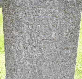 BARNES, FLORENCE M. - Branch County, Michigan | FLORENCE M. BARNES - Michigan Gravestone Photos